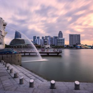 Singapore Trips with Bzzgetaway
